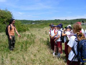 bushcraft summer school jersey