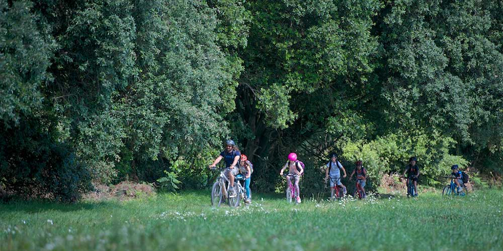 cycle tours in jersey childrens summer camps